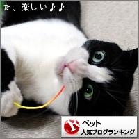 dai20170512_banner.jpg