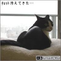 dai20170515_banner.jpg