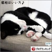dai20170516_banner.jpg