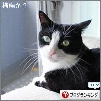 dai20170601_banner.jpg