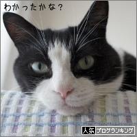 dai20170612_banner.jpg