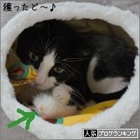 dai20170619_banner.jpg