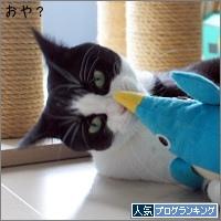 dai20170622_banner.jpg