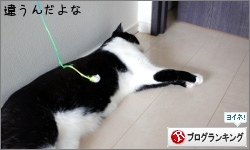 dai20170628_banner.jpg