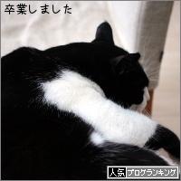 dai20170629_banner.jpg