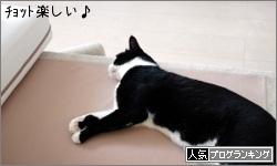dai20170630_banner.jpg