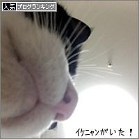 dai20170704_banner.jpg