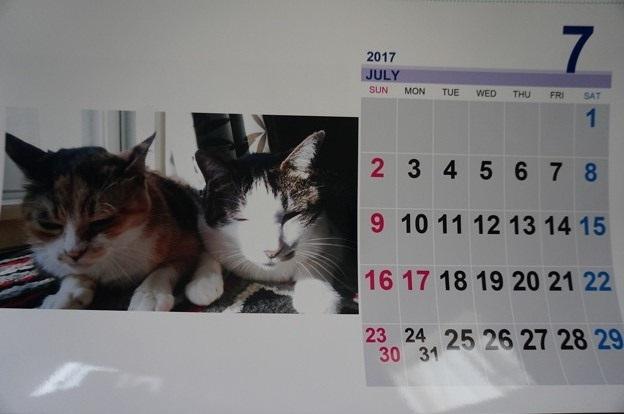 2017.7のカレンダー