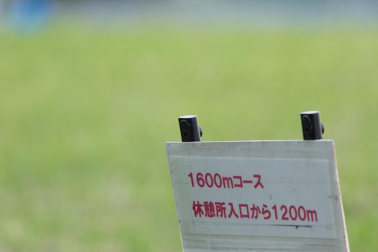 1K4A8453.jpg