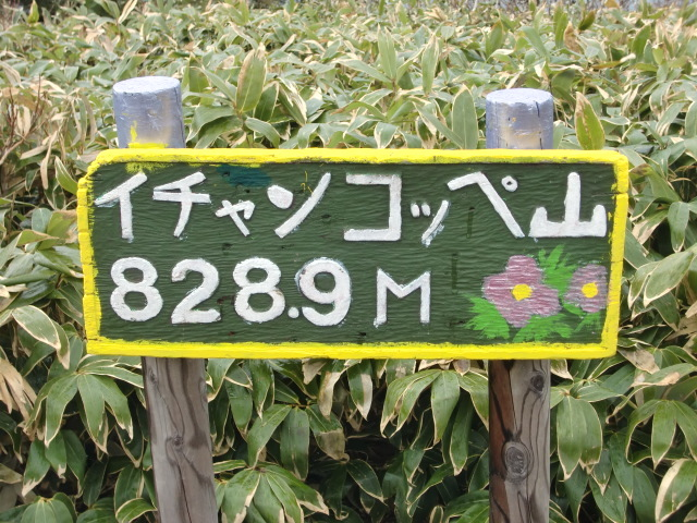 CIMG3703.jpg