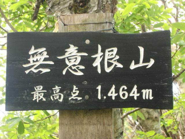 CIMG4951.jpg