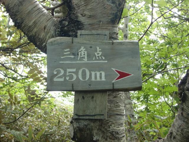 CIMG4952.jpg