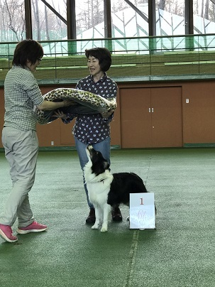 170415三井ニコル入賞