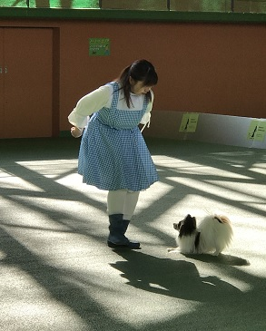 170415篠田マリア2