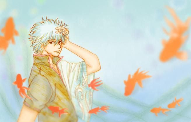 銀さん 銀魂 金魚