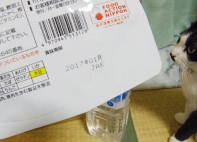 IMGP2783.jpg