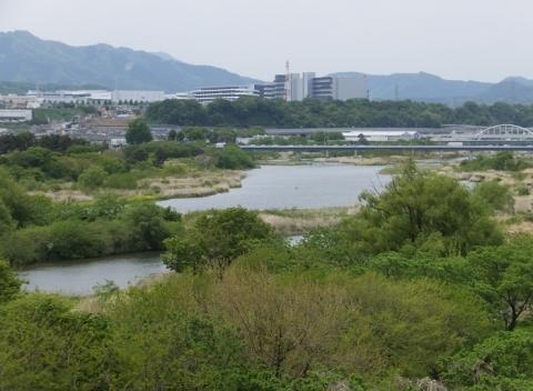 新三段の滝橋より相模川を望む