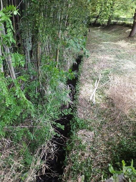 道保川から取水した用水路