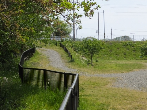 道保川から取水した用水路付近の風景