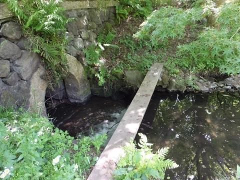 道保川公園南端のトンネル入口