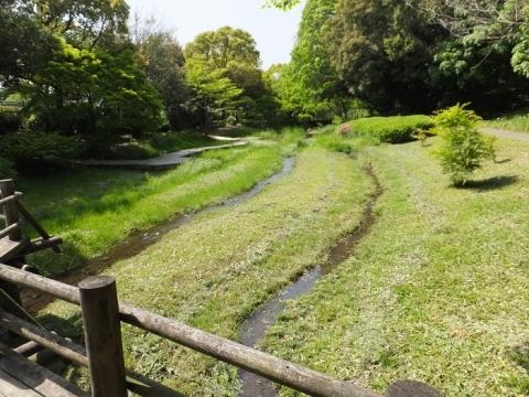 道保川公園内を流れる道保川