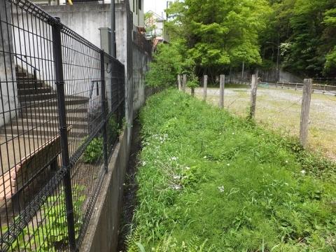 道保川・道保川公園丸崎入口付近