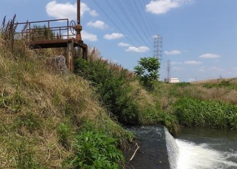 小稲葉排水路・歌川に合流