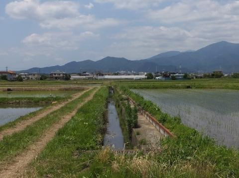 高沢排水路