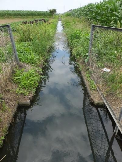 城島用水路