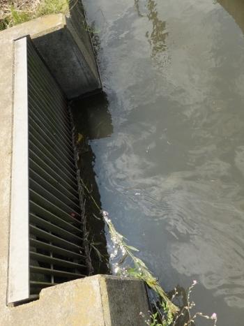 第2工区揚水機場取水口