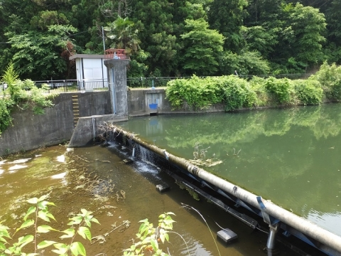 荻野川・荻野川運動公園下流の取水堰