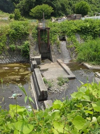 荻野川・本郷橋の角落し固定堰