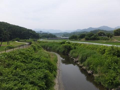 本郷橋より荻野川上流を望む