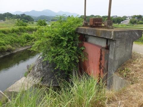 荻野川に合流する公所川