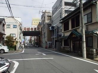 shinmichi9.jpg