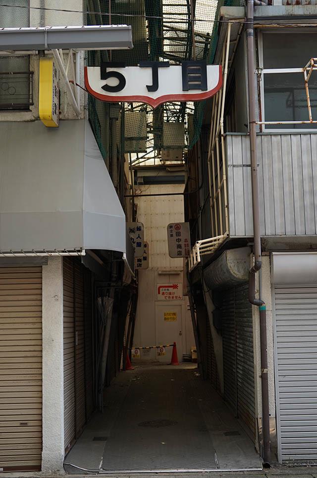 gifu17.jpg