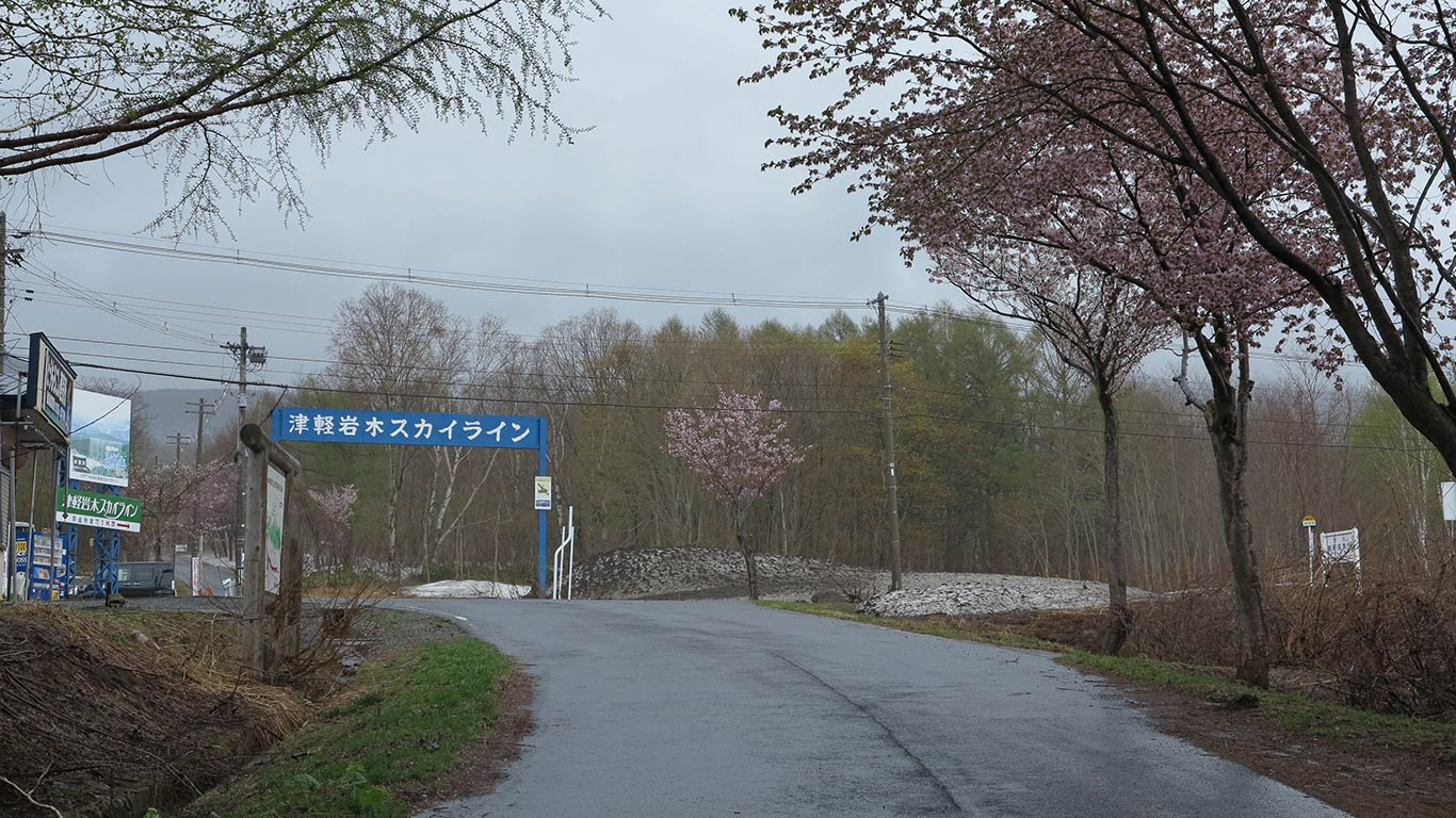 17amesakura06.jpg