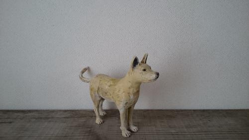 インドの犬立ち姿3