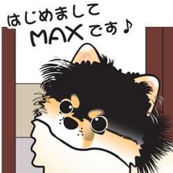 01__tn_max.jpg
