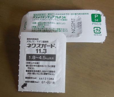 DSCN1611.jpg