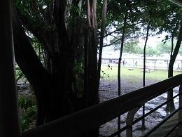 DSC_0090_7シンガポール