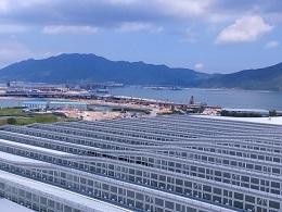 DSC_0057 (2)国際空港の屋根