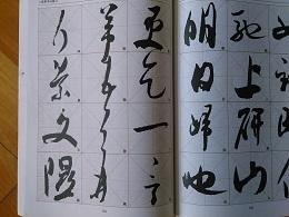 DSC_0020 (3)米芾 草書