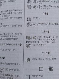 DSC_0038 (2)詞典