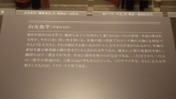 IMGP2812.jpg