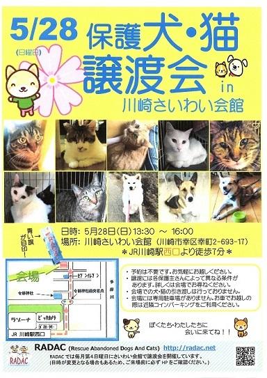 0528saiwai1.jpg
