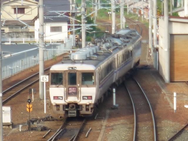 P1000339 (640x481)