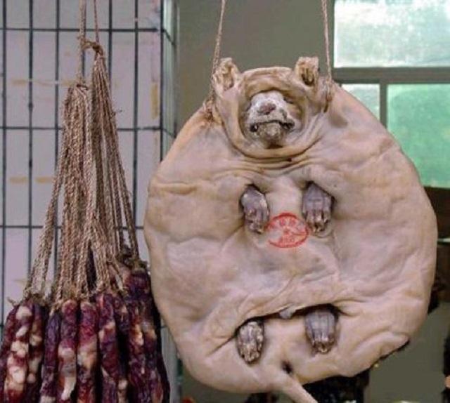 ロシア 犬肉1
