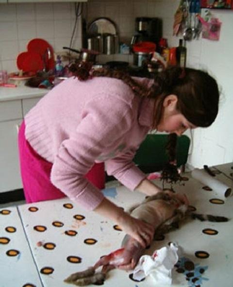 ロシア 猫肉
