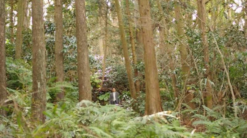 morinokuma3.jpg